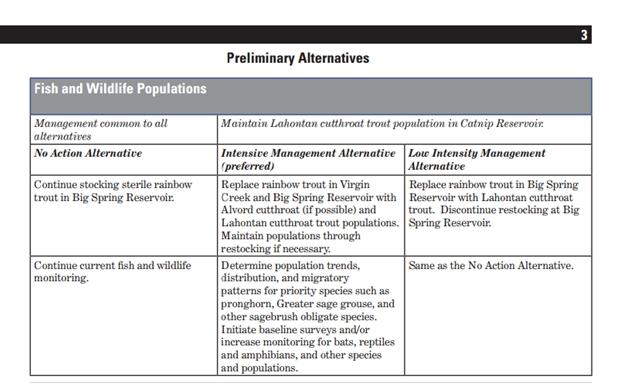 Sheldon Preliminary Alternatives