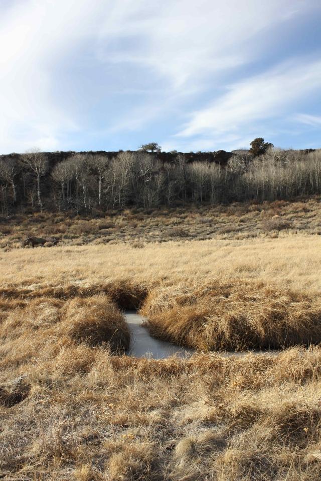 Guano Creek 03