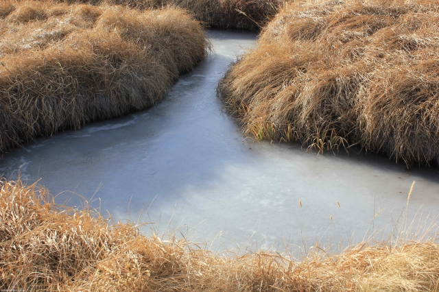 Guano Creek 05