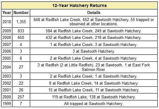 Redfish Lake Sockeye Returns 1999-2010